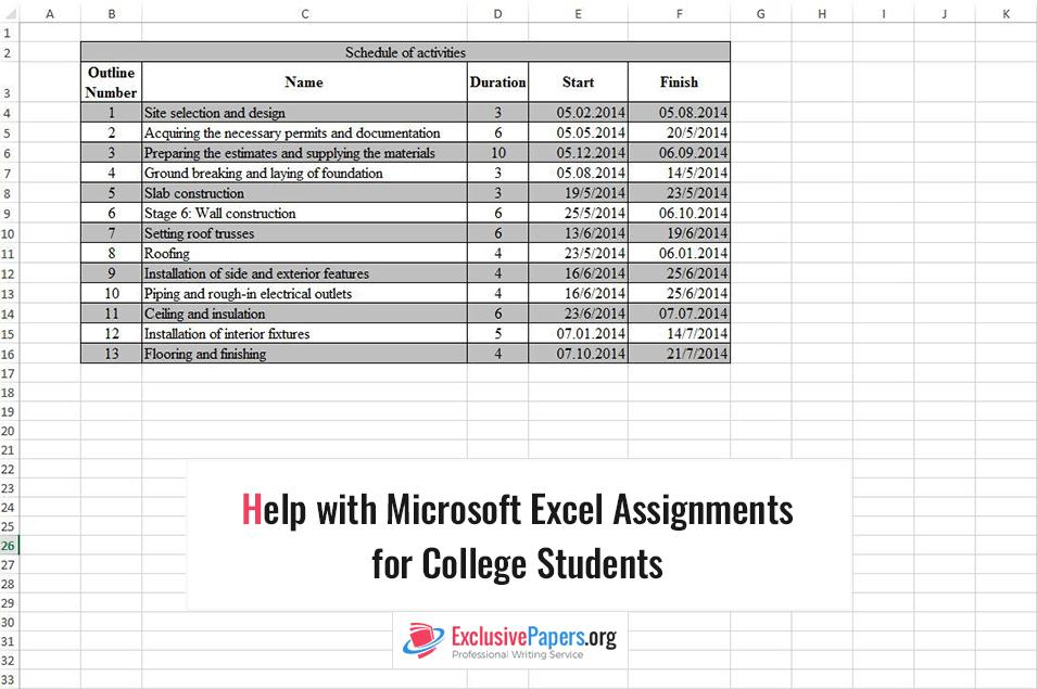 Exclusive Help with Microsoft Excel Assignments for College Students